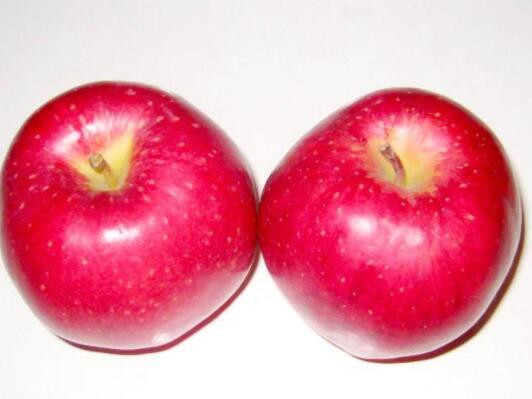 热量最低的水果排名 十大减肥水果排行榜